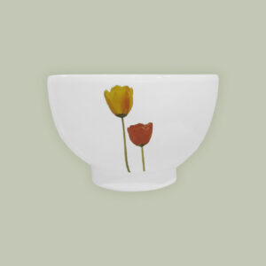 bowl-tulipan copia
