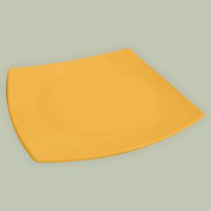 plato-playo-cuad-color copia